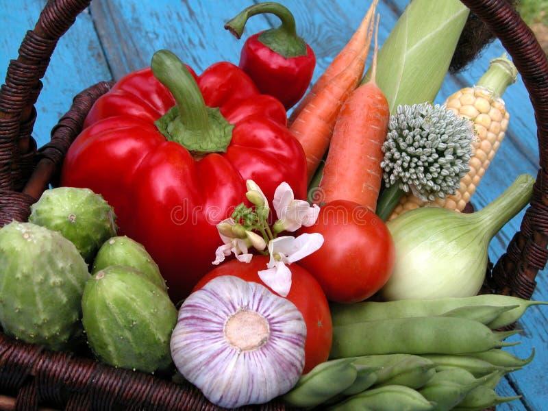 Download Verdure immagine stock. Immagine di estate, verdura, carote - 215393