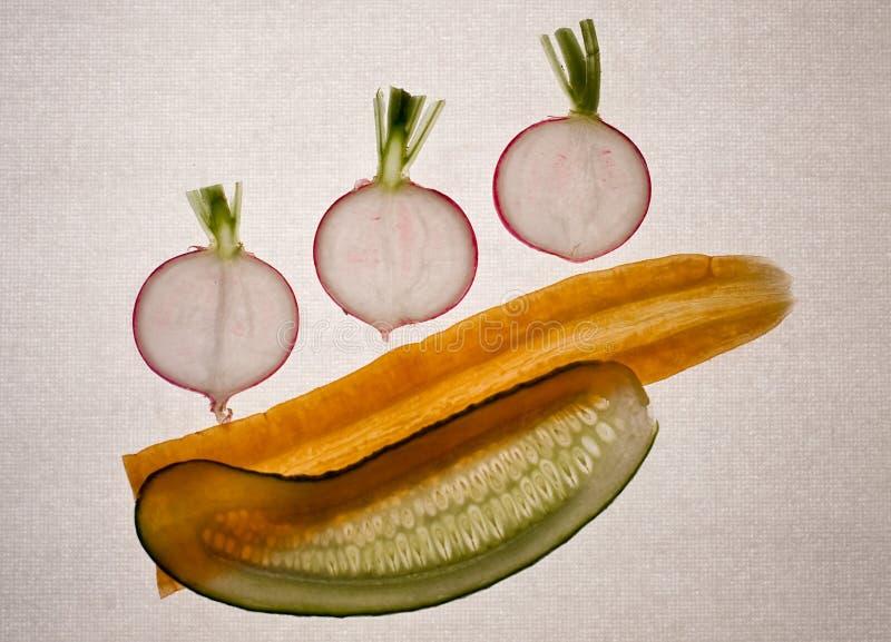Verdure (5) illustrazione vettoriale