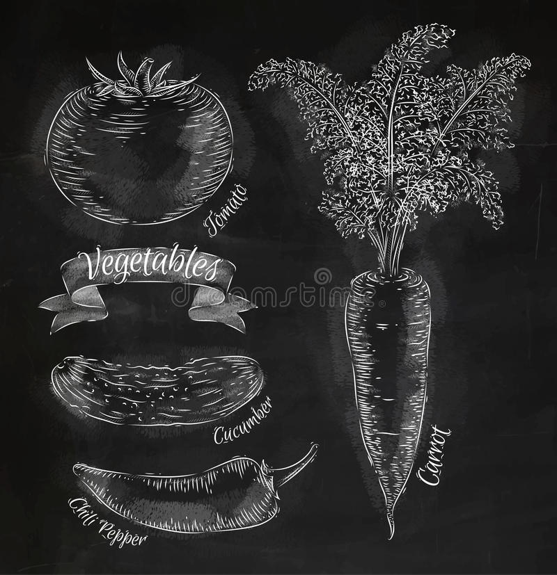 Verdure carota, pomodoro, peperoncini, cetriolo illustrazione di stock