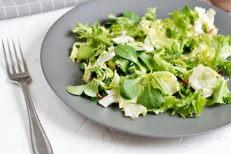 Verdure del pomodoro del pepe dell'olio della rucola del cavolo dell'insalata dei bistrot immagini stock libere da diritti