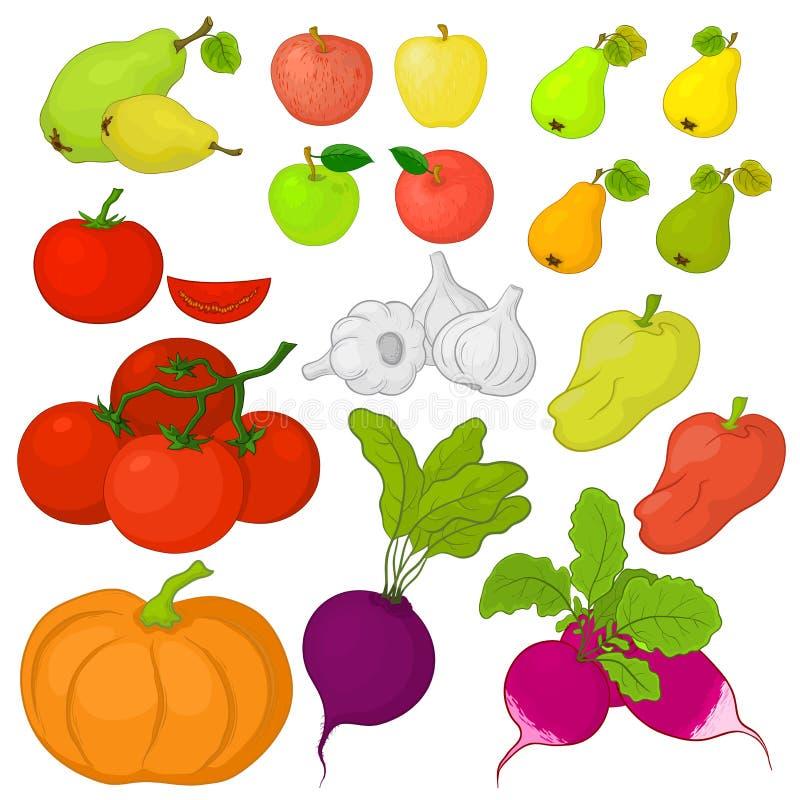 Verdure e frutta, insieme illustrazione di stock