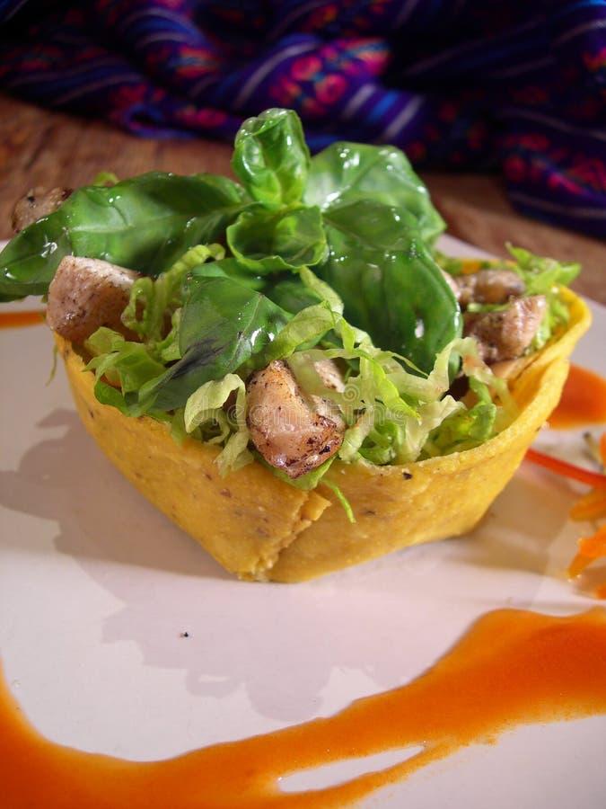 Verdure ed insalata di pollo fotografia stock libera da diritti