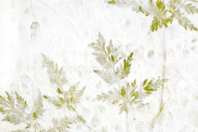 Verdure en papier fabriqué à la main photographie stock libre de droits