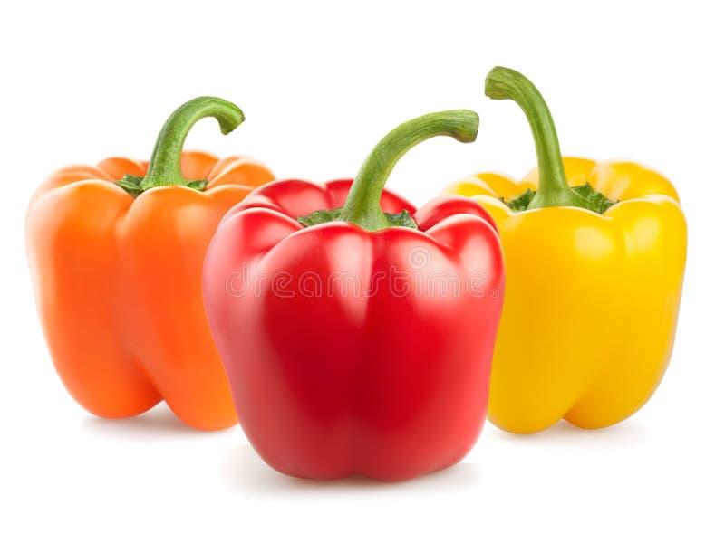 Verdure fresche del pepe su fondo bianco immagini stock