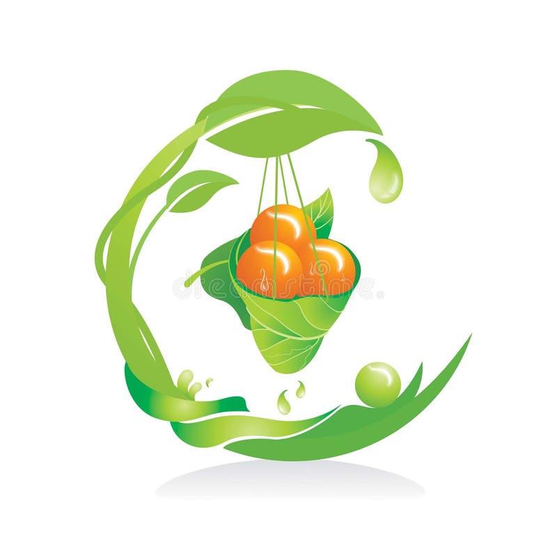 Verdure & frutta della natura di vettore di progettazione, immagini stock