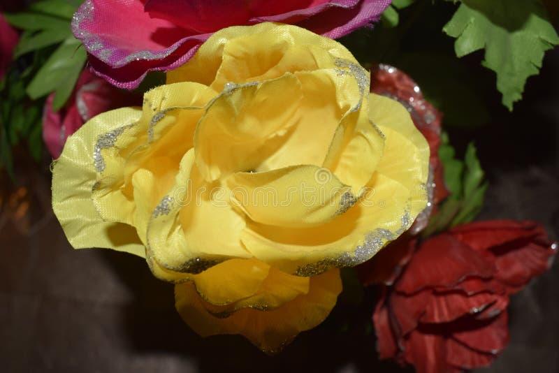 Verdure naturelle dans des couleurs naturelles photos stock