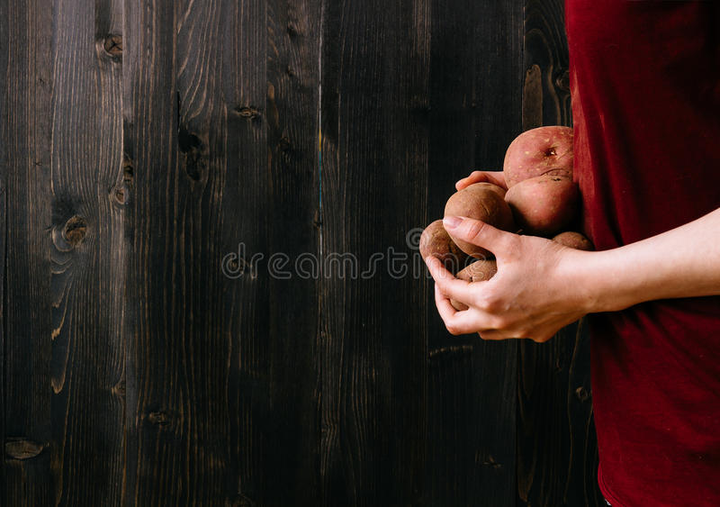 Verdure organiche Mani che tengono le patate fresche Fondo di legno nero con lo spazio della copia fotografie stock