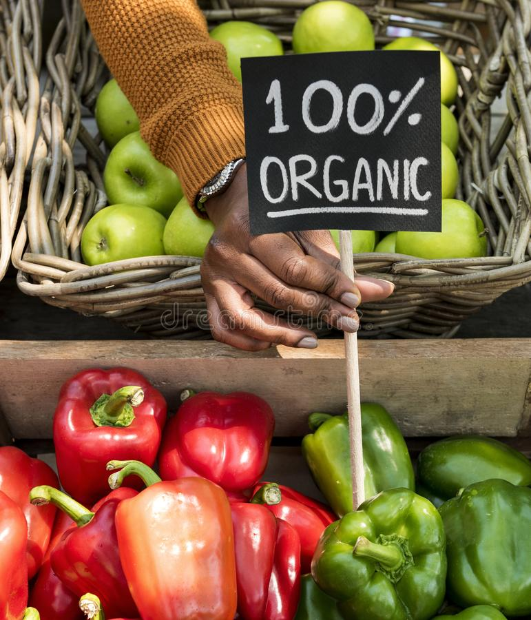 Verdureiro que vende produtos agrícolas frescos orgânicos no mercado do fazendeiro foto de stock royalty free