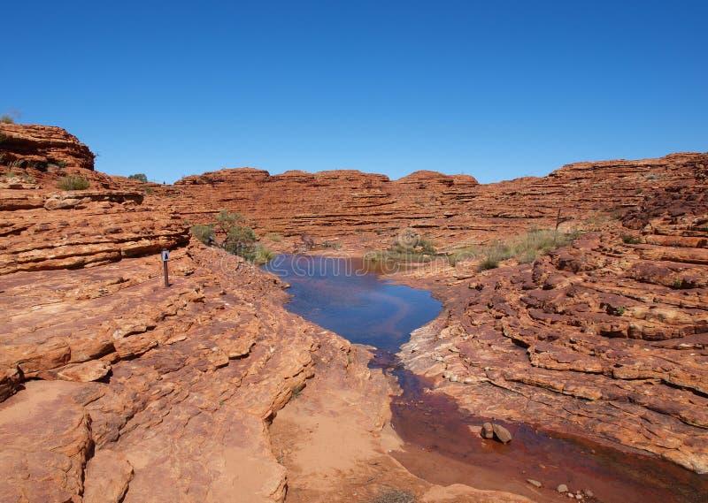 Vereinigen Sie auf Könige Canyon stockfotografie