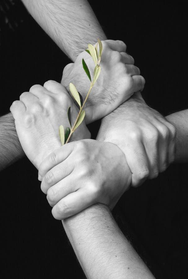 Vereinigt im Frieden stockfoto