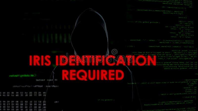 Vereiste irisidentificatie, niet succesvolle het binnendringen in een beveiligd computersysteem poging op server, mislukking royalty-vrije stock afbeeldingen