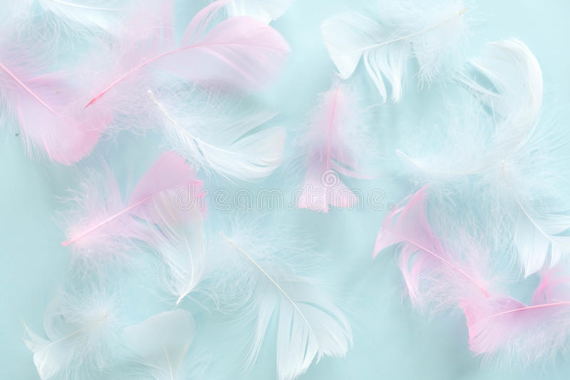 Veren Abstracte Achtergrond De achtergrond voor ontwerp met zachte colorfull bevedert patroon Zachte pluizige veren  stock afbeelding