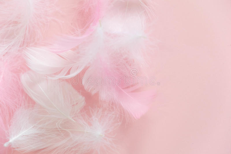 Veren Abstracte Achtergrond De achtergrond voor ontwerp met zachte colorfull bevedert patroon Zachte pluizige veren  stock foto