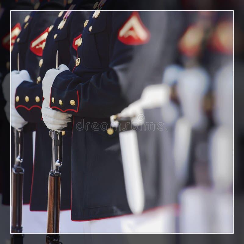 Verenigde Staten Marine Corps Gelukkige Veteranendag stock foto's
