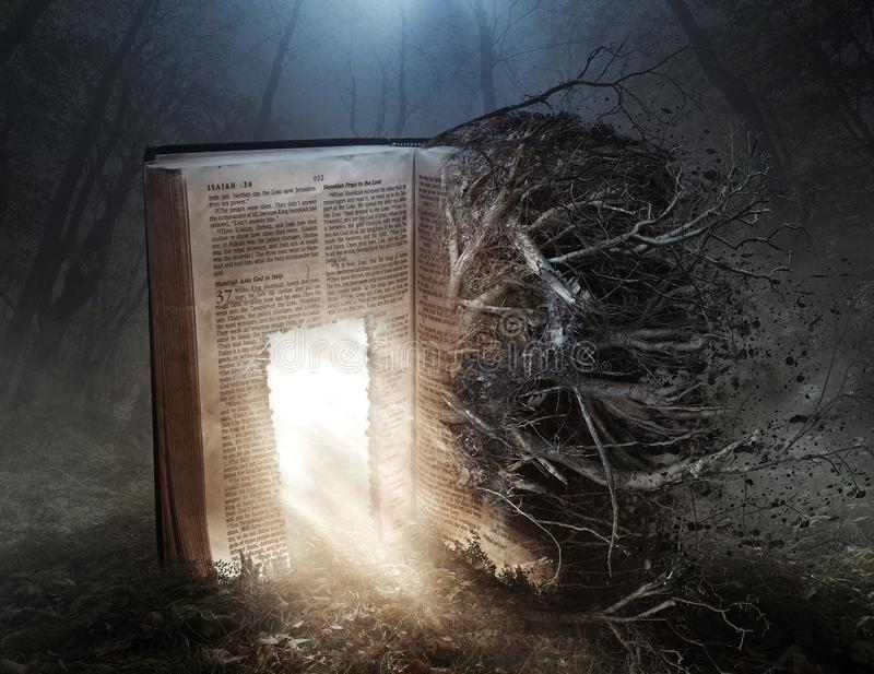 Verfallende Bibel mit offener Tür stockfotografie
