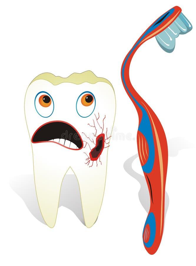 Verfallener molarer Zahn stockbild