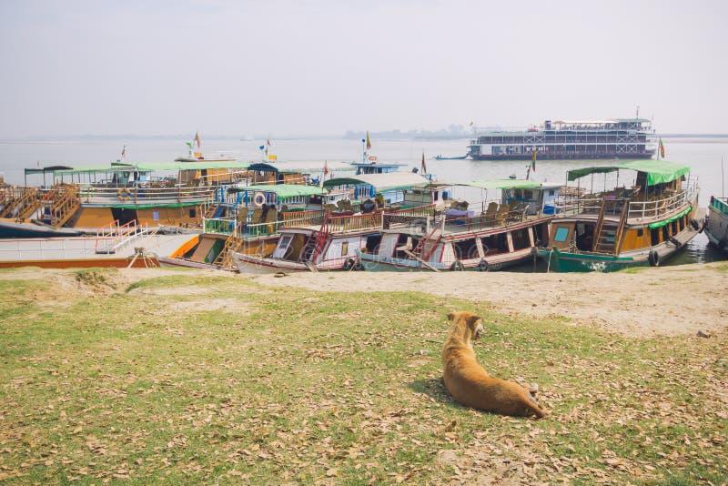 Verfolgen Sie das Sitzen auf einem Gras mit dem Ankern des touristischen Bootes im Irrawaddy-Fluss im Hintergrund lizenzfreie stockbilder