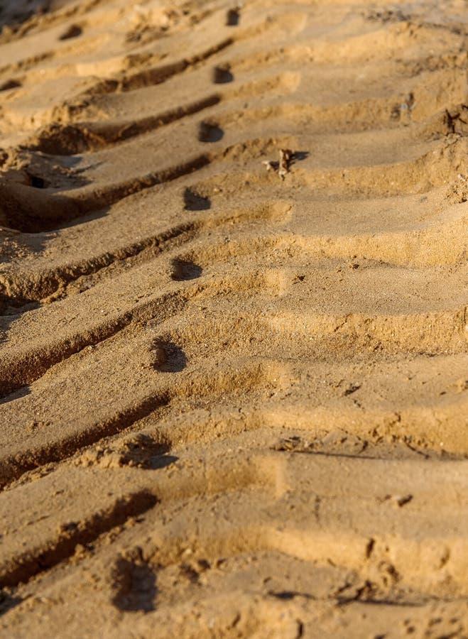 Verfolgen Sie den Sand stockfoto