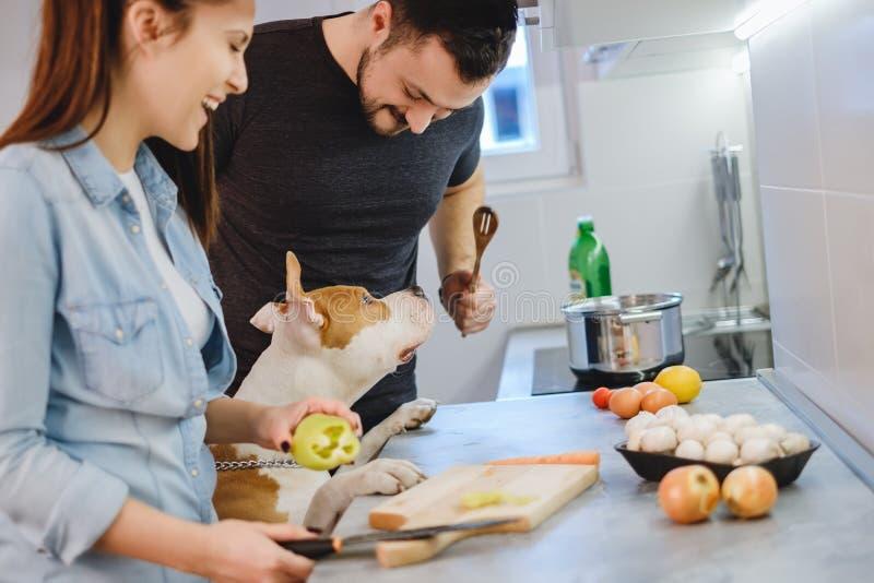 Verfolgen Sie Stellung oben in der Küche, während Paar lacht stockbild