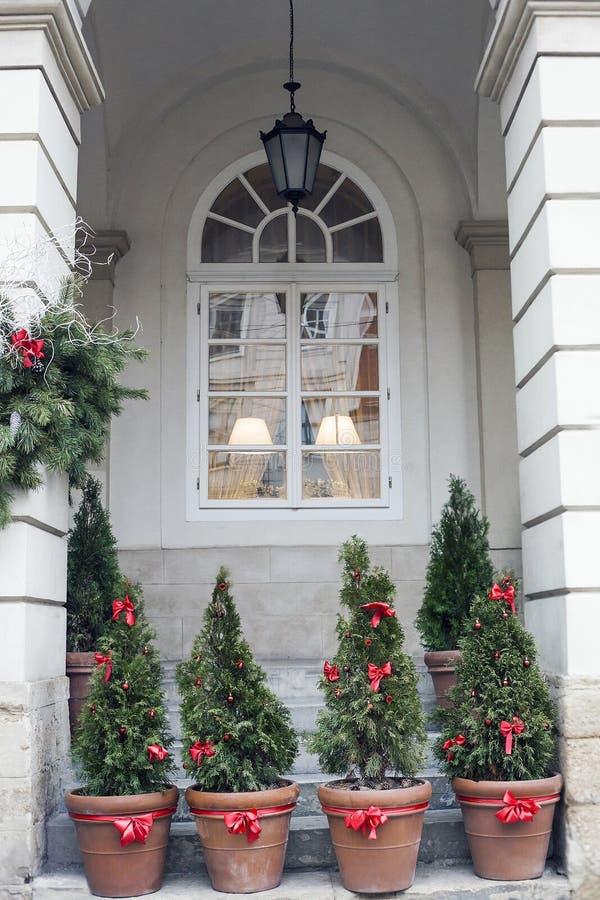 Verfraaide Kerstbomen in potten dichtbij huis royalty-vrije stock foto's