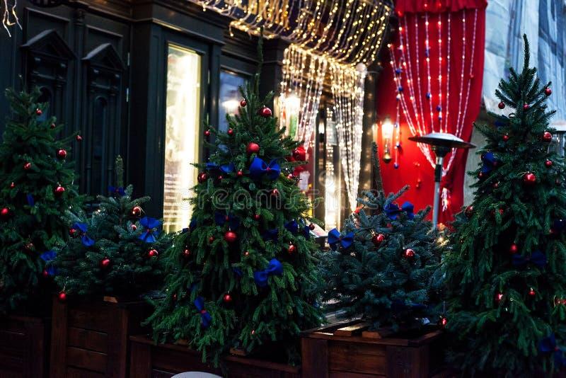 Verfraaide Kerstbomen in potten dichtbij huis op nachtstraat stock afbeeldingen