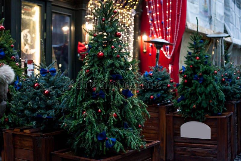Verfraaide Kerstbomen in potten dichtbij huis op nachtstraat stock foto's
