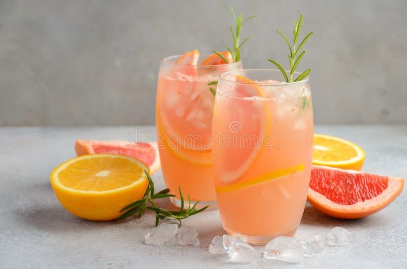 Verfrissende citrusvruchtencocktail met grapefruit, sinaasappel en rozemarijn royalty-vrije stock fotografie