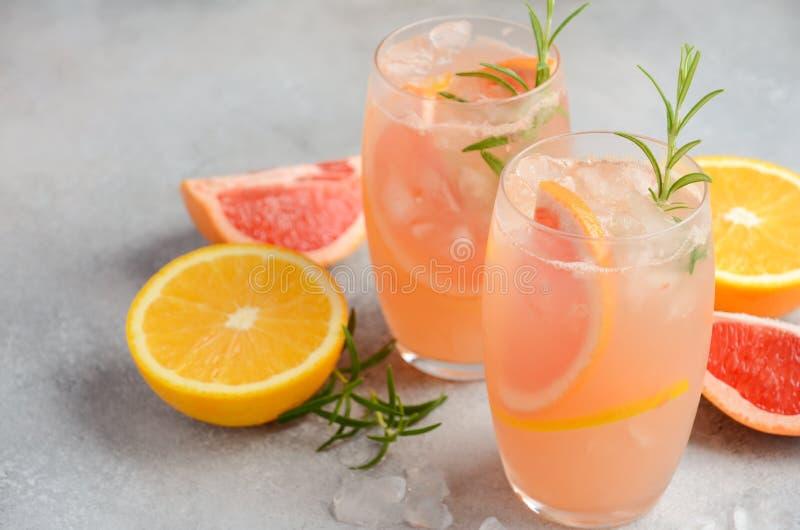 Verfrissende citrusvruchtencocktail met grapefruit, sinaasappel en rozemarijn royalty-vrije stock afbeelding