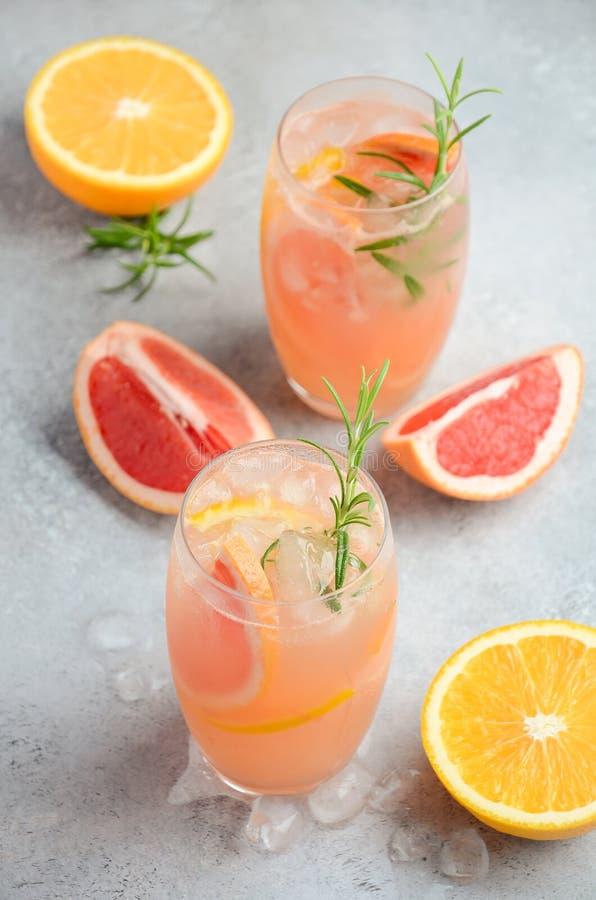 Verfrissende citrusvruchtencocktail met grapefruit, sinaasappel en rozemarijn royalty-vrije stock afbeeldingen