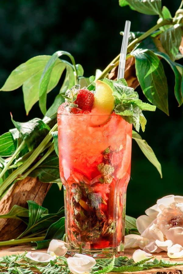 Verfrissende cocktail met ijs, munt, citroen en aardbeien op de achtergrond van groene bladeren ruimte Sluit omhoog stock afbeelding