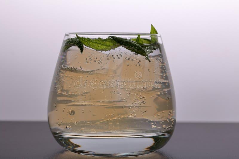 Verfrissende drank met gasbellen Nalit in een transparant glas Het legde verpletterd ijs Verfraaid met muntbladeren stock fotografie