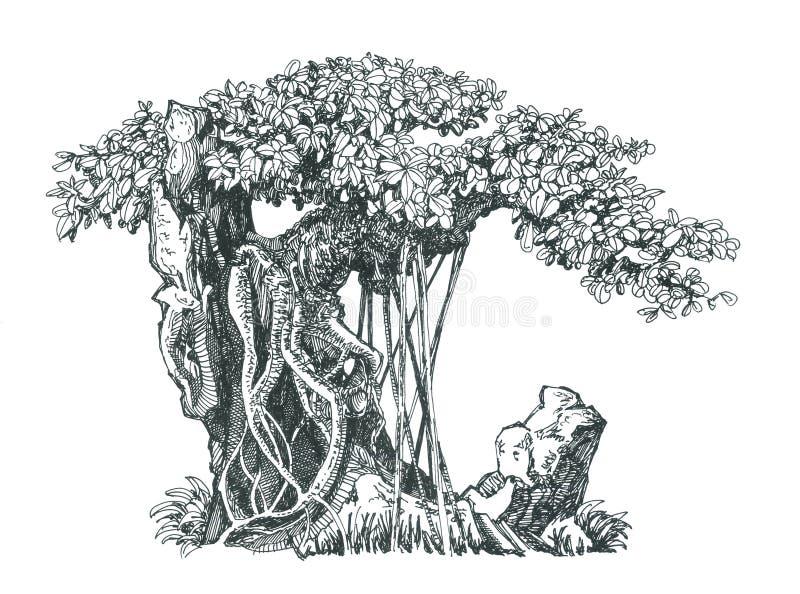 Vergankelijke bonsai op rots royalty-vrije illustratie