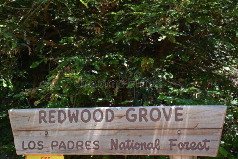 Verger Big Sur la Californie de séquoia de réserve forestière d'aumôniers de visibilité directe photographie stock