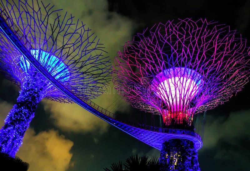 Verger de Supertree dans les jardins par la baie à Singapour photo libre de droits