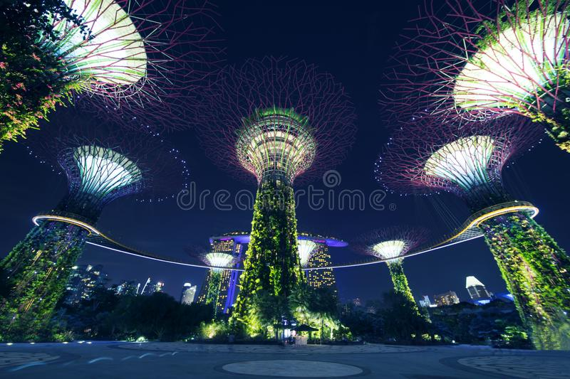 Verger de Supertrees avec Skyway à Singapour images libres de droits