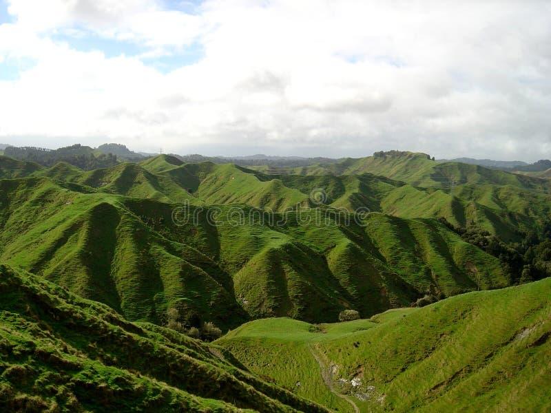 Vergessene Welt, Neuseeland lizenzfreie stockfotografie