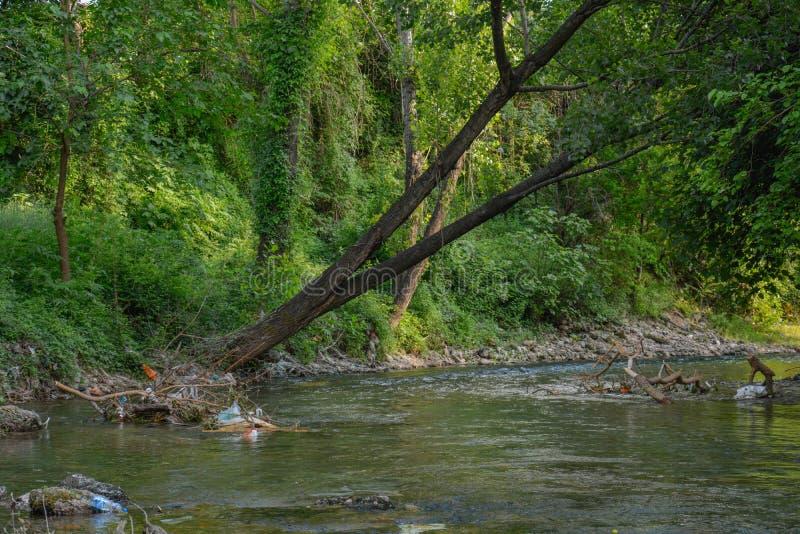 Vergessener Fluss lizenzfreie stockfotografie