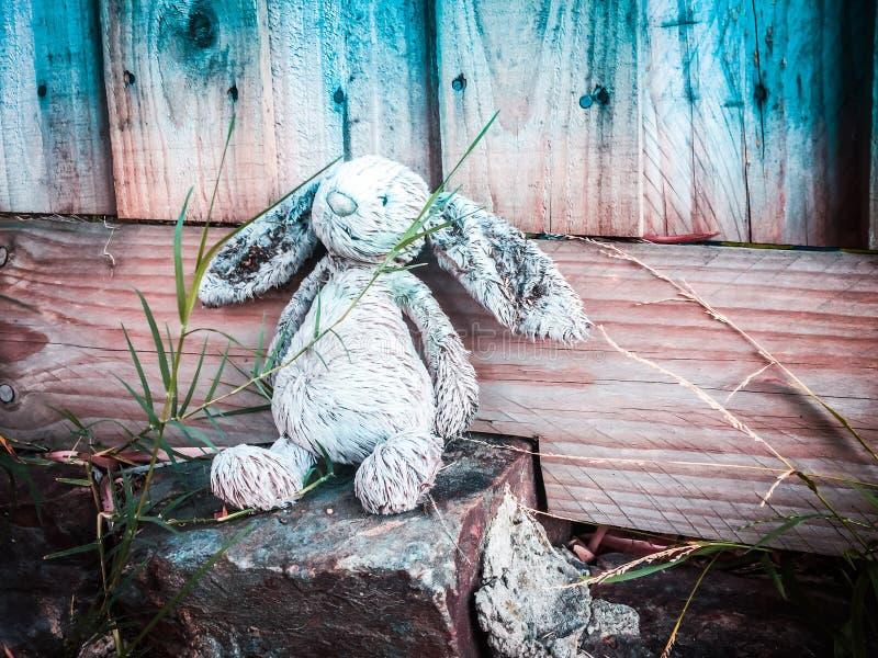 Vergessenes Spielzeug im Gras lizenzfreie stockfotos