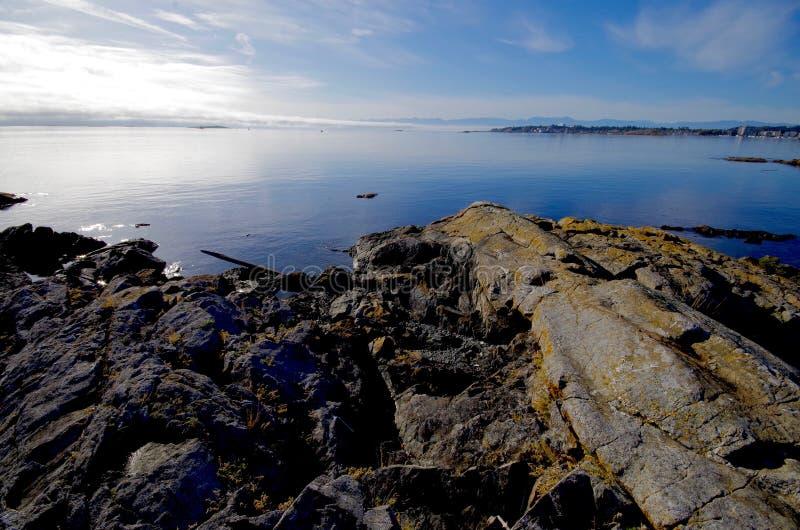 Vergletscherte Felsen auf dem Ufer nahe Vieh zeigen direkt das Auge über dem Meer auf die olympischen Berge stockfotografie