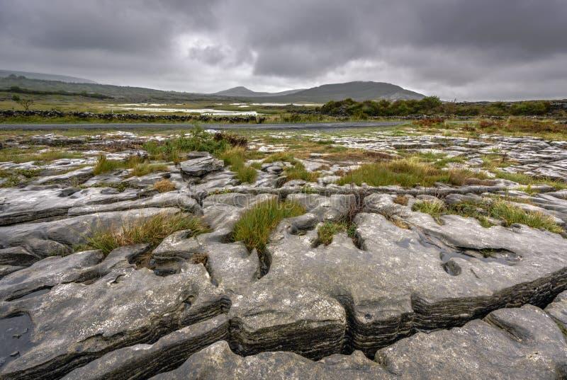 Vergletscherte Karstlandschaft des Burren mit Mullaghmore-Berg, Grafschafts-Korken, Irland stockfotografie