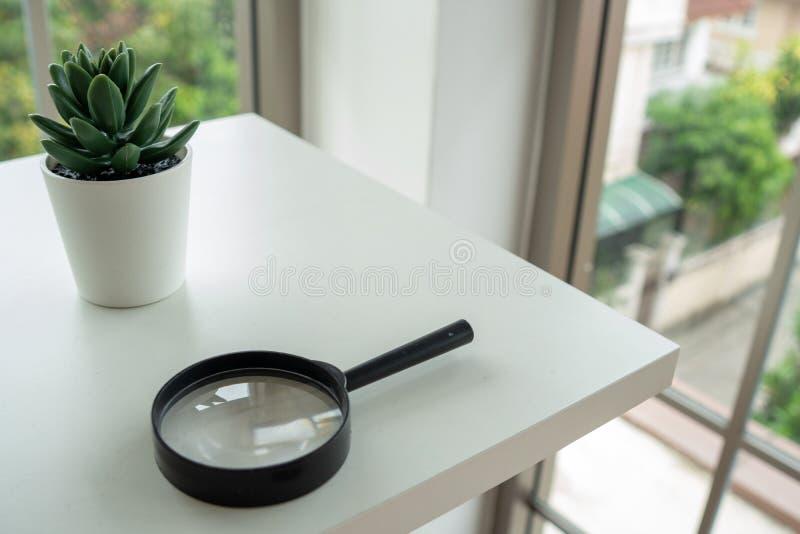 Vergrootglas en kleine ingemaakte installaties bij één hoek van het rek royalty-vrije stock fotografie