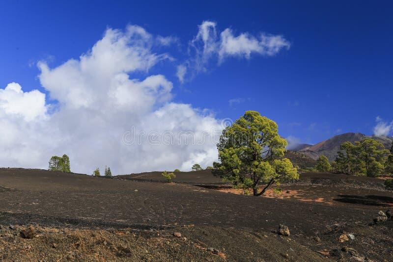 Verhärtete Lava des Vulkans auf dem Hintergrund des blauen Himmels lizenzfreie stockbilder