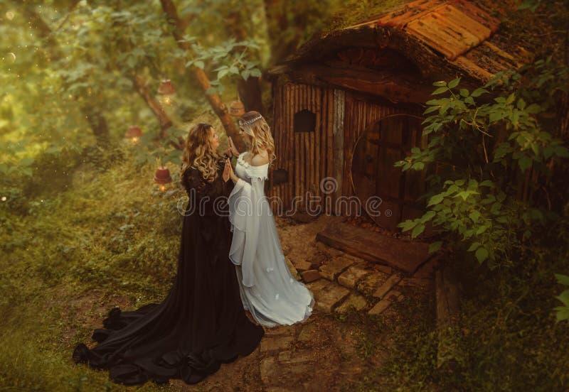 Verhaal van Maleficent Een donkere tovenares en een jong, blond meisje Zij leven in een kleine hut met hout en mos fairytale stock afbeeldingen