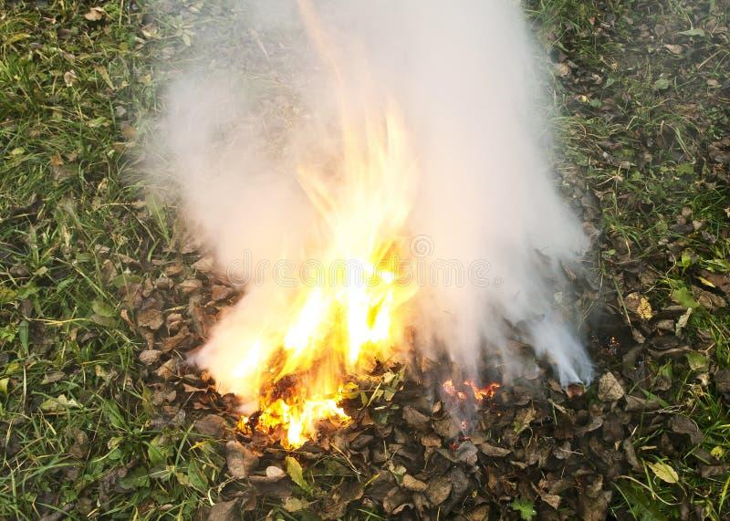 Verheerendes Feuer lizenzfreie stockfotografie
