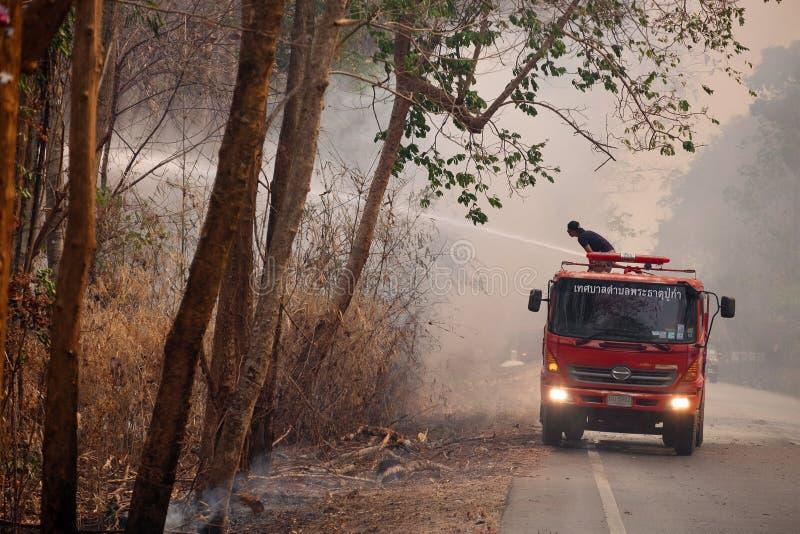 2019-04-02 verheerendes Feuer in Forrest Near die lokale Straße, Natur-Unfall im Sommer, Chiangmai Thailand stockbild