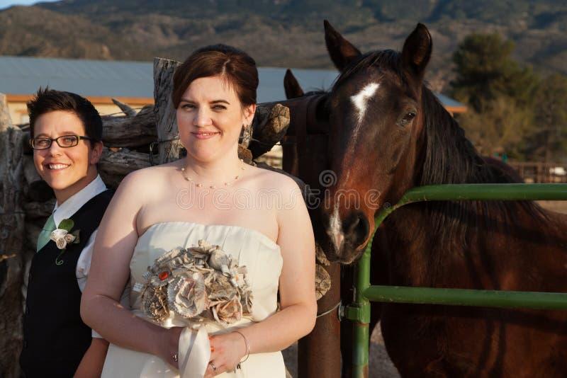 Verheiratete homosexuelle Paare nähern sich Pferd lizenzfreie stockbilder