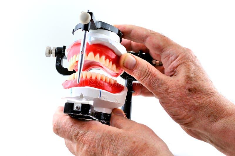 Verific dentaduras foto de stock
