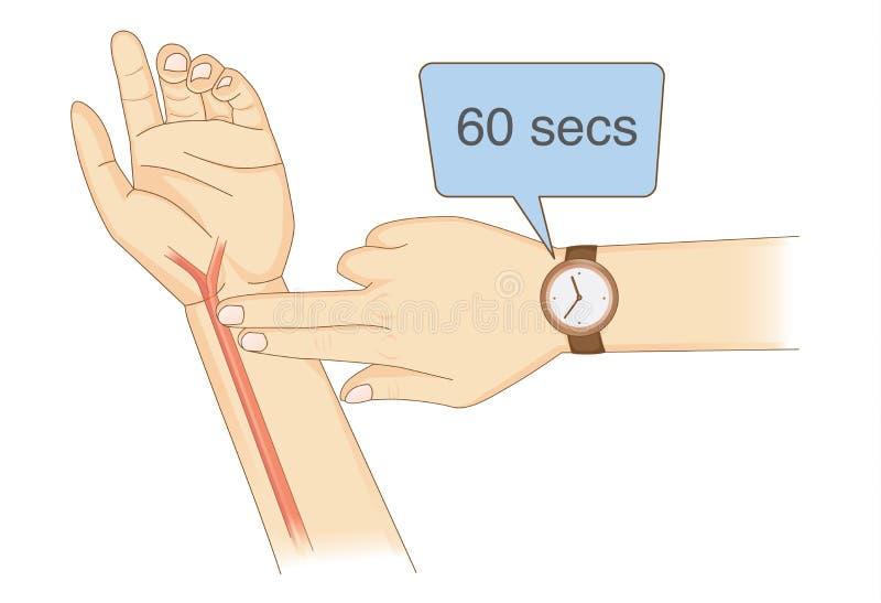 Verificando seu coração Rate Manually com os dedos e o relógio de pulso do lugar dois ilustração do vetor