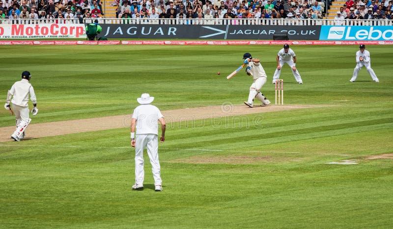 Verifichi la partita del cricket immagini stock