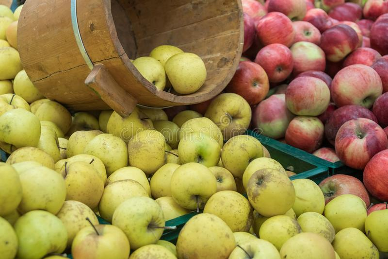 Verious apples in Market stall. healthy food.  stock photography
